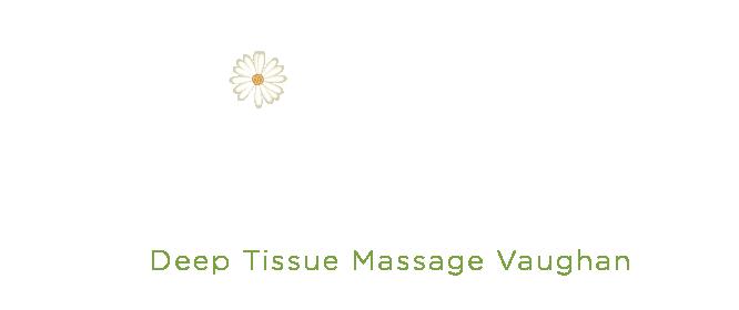 Steeles 400 Wellness Centers